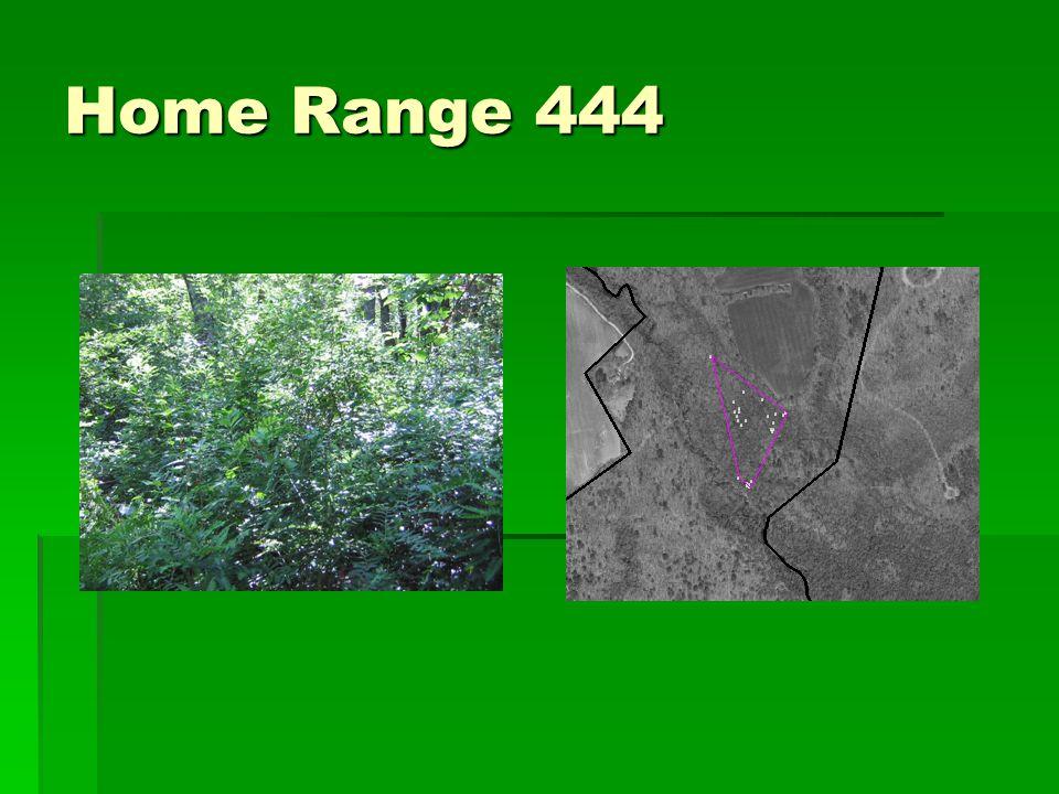 Home Range 444