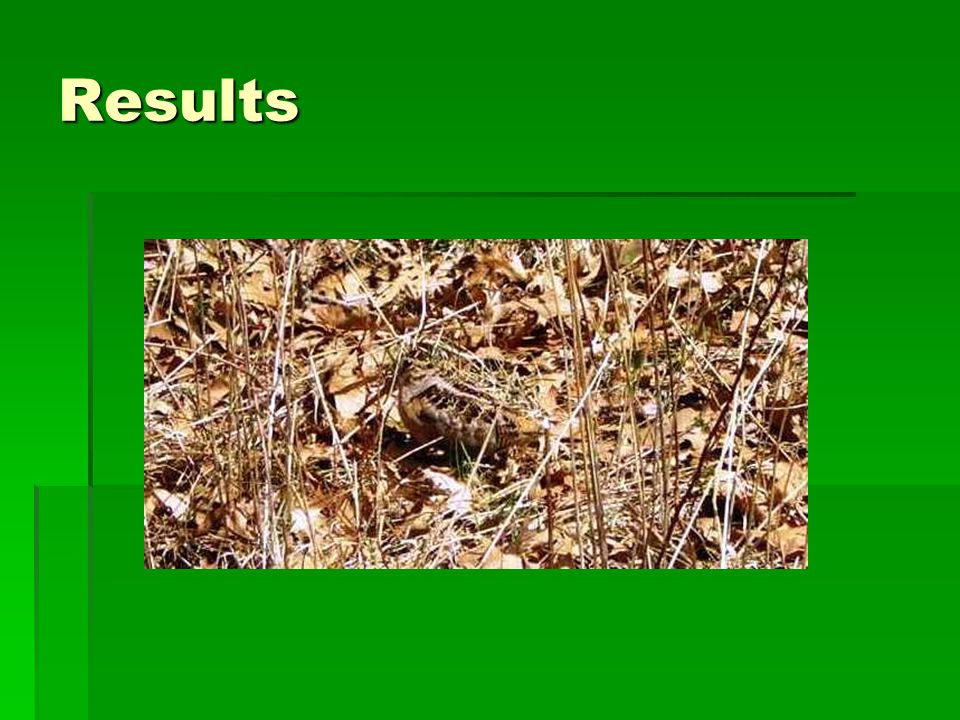 Results Telemetry  Home range: MCP  Feeding covers  Roosting fields  Nesting covers