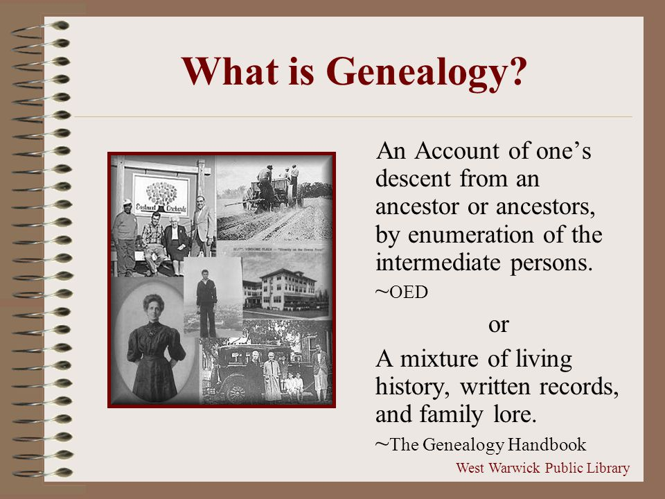 What is Genealogy.