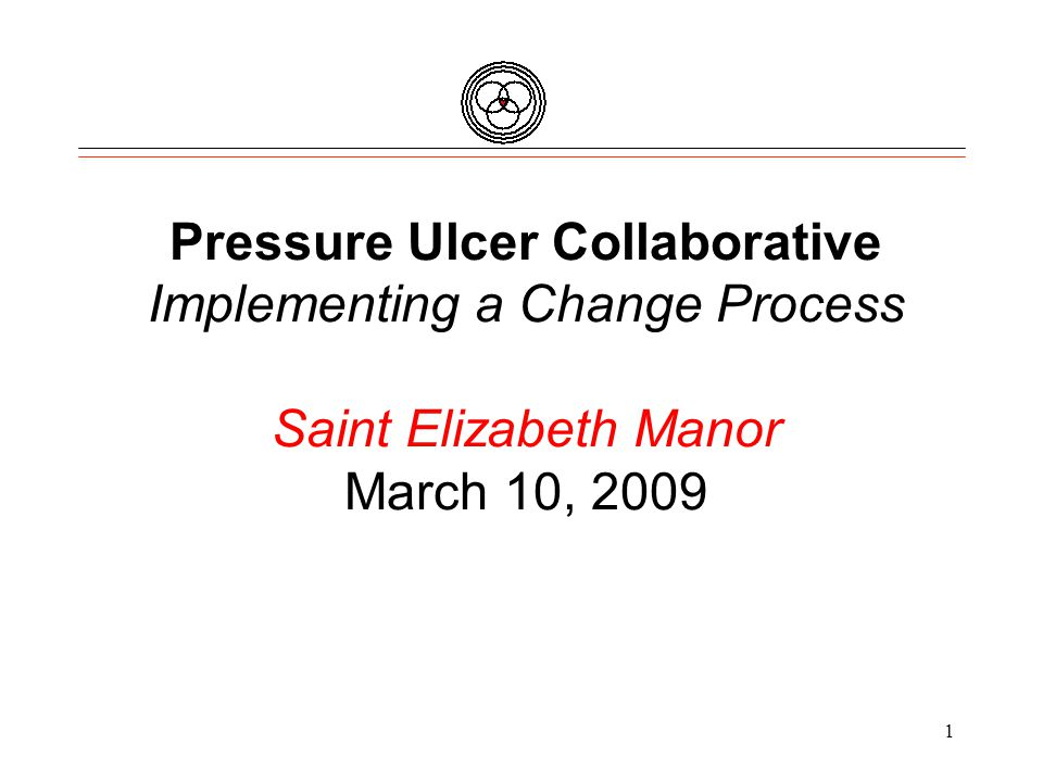 Pressure Ulcer Collaborative Implementing a Change Process Saint Elizabeth Manor March 10, 2009 1