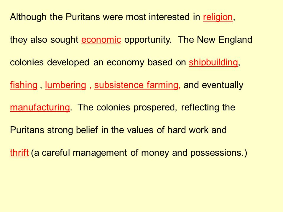 Although the Puritans were most interested in religion, they also sought economic opportunity. The New England colonies developed an economy based on