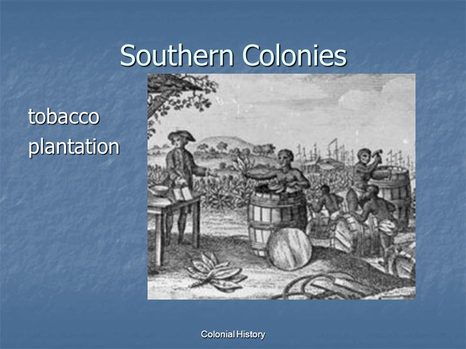 Colonial History Southern Colonies tobaccoplantation