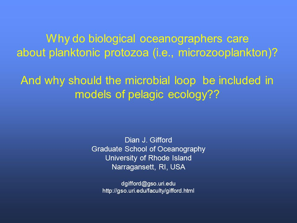 Why do biological oceanographers care about planktonic protozoa (i.e., microzooplankton)? And why should the microbial loop be included in models of p