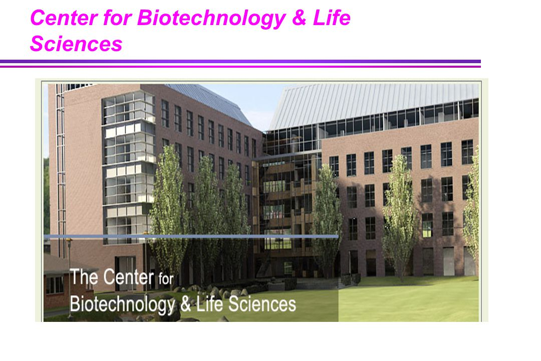 Center for Biotechnology & Life Sciences