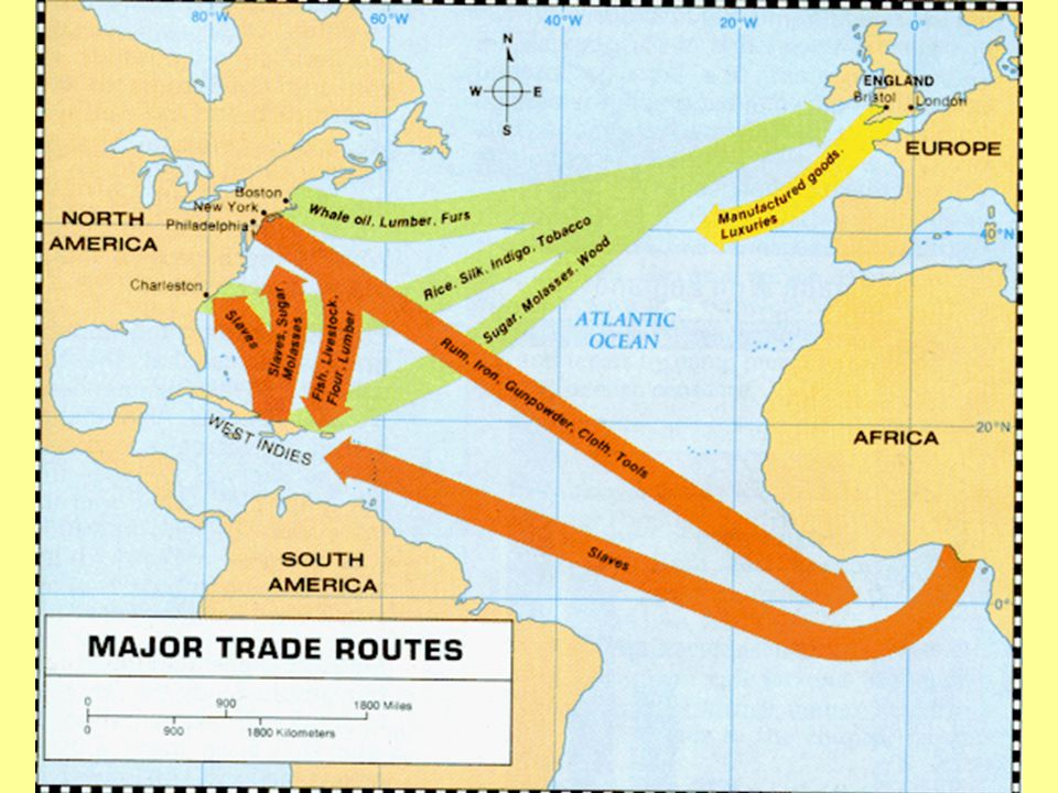 Triangle Trade The route through which slaves were brought to the New World.
