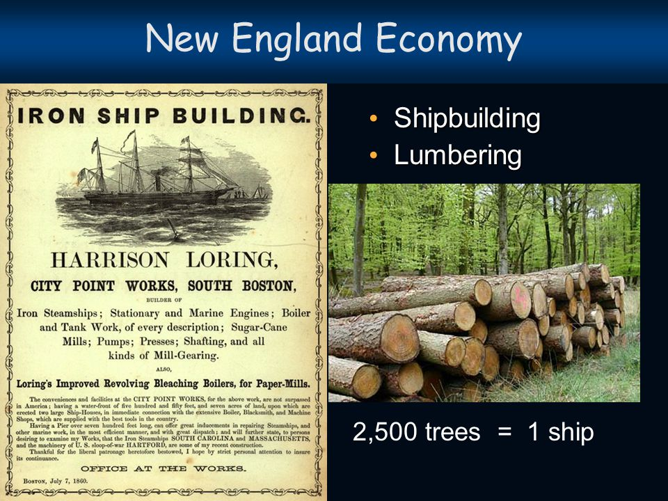 New England Economy Whaling and Fishing Whaling and Fishing Fur Trading Fur Trading