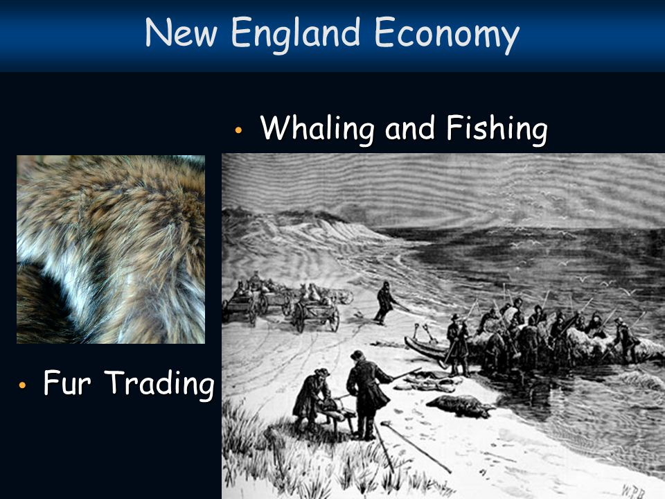 1.What was the motivation, or reason, behind the development of the New England, colonies.