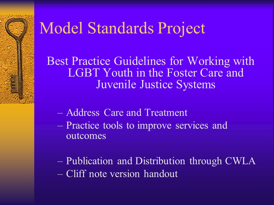Model Standards Project Best Practice Guidelines for Working with LGBT Youth in the Foster Care and Juvenile Justice Systems –Address Care and Treatment –Practice tools to improve services and outcomes –Publication and Distribution through CWLA –Cliff note version handout
