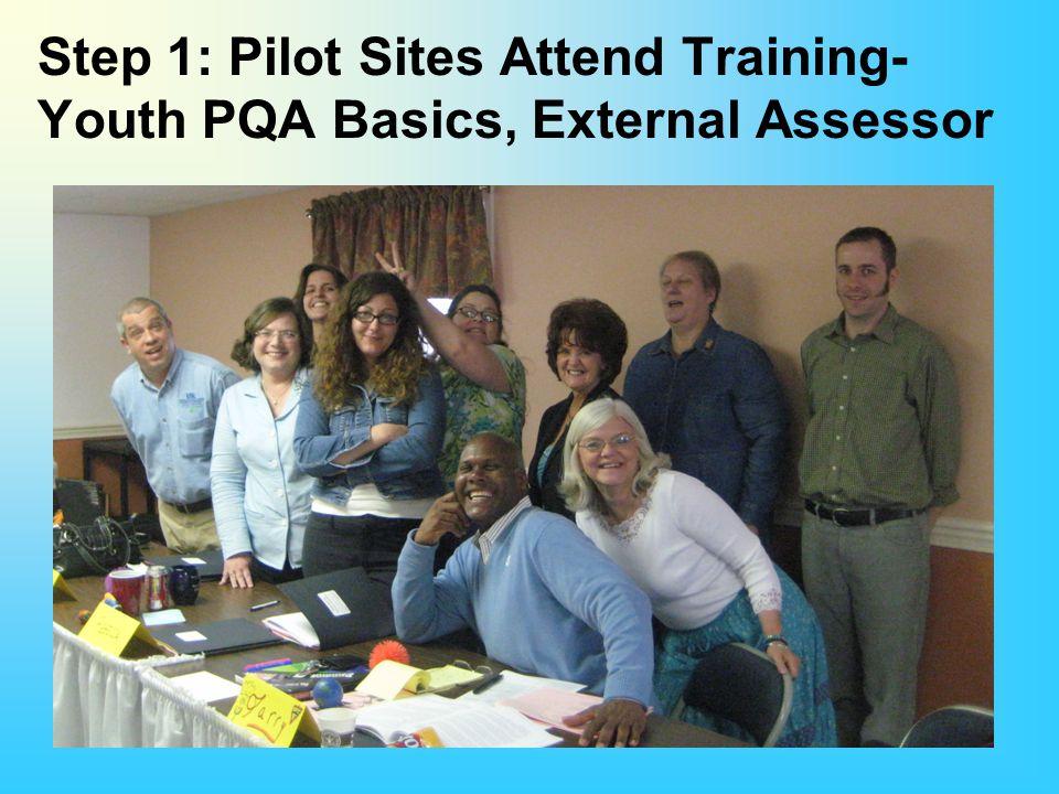 Step 1: Pilot Sites Attend Training- Youth PQA Basics, External Assessor