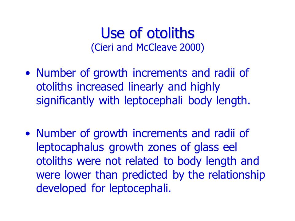 Use of otoliths Use of otoliths (Cieri and McCleave 2000) Number of growth increments and radii of otoliths increased linearly and highly significantly with leptocephali body length.