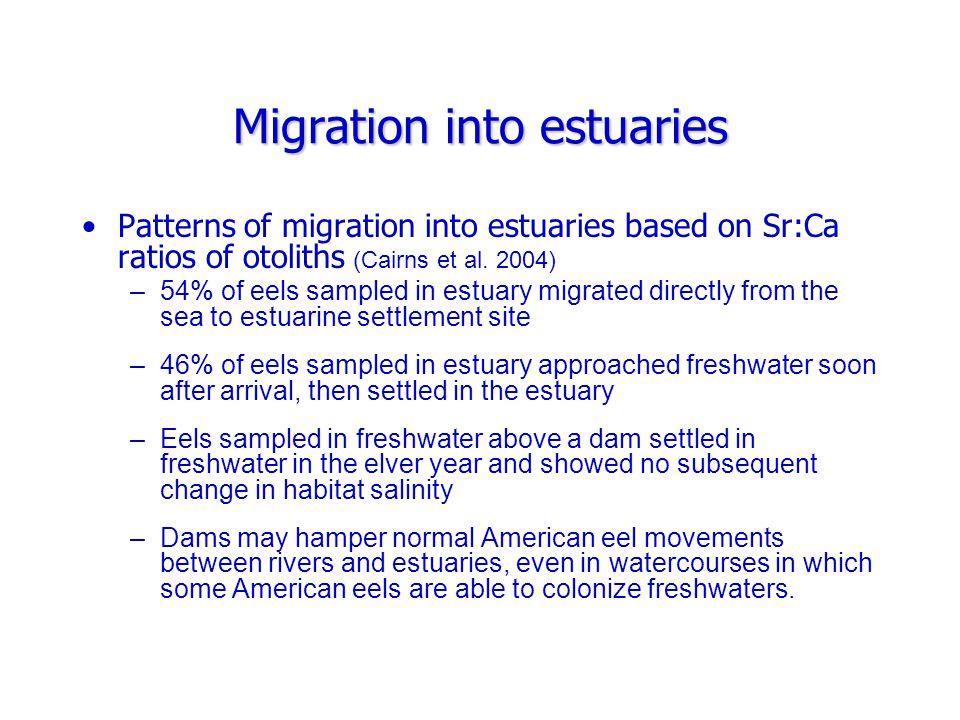 Estuarine and riverine migration Glass eels utilize selective tidal stream transport (STST); depth selection depends on salinity (McCleave and Kleckner 1982).