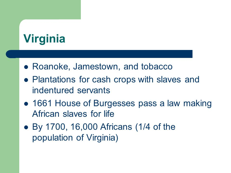 Virginia Roanoke, Jamestown, and tobacco Plantations for cash crops with slaves and indentured servants 1661 House of Burgesses pass a law making African slaves for life By 1700, 16,000 Africans (1/4 of the population of Virginia)