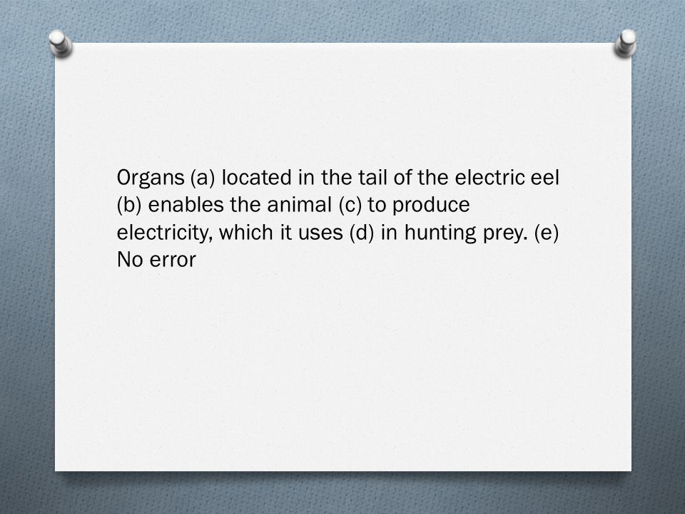 Organs (a) located in the tail of the electric eel (b) enables the animal (c) to produce electricity, which it uses (d) in hunting prey. (e) No error