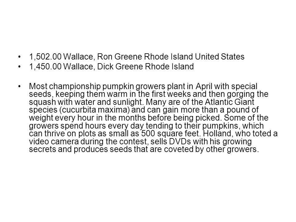 1,502.00 Wallace, Ron Greene Rhode Island United States 1,450.00 Wallace, Dick Greene Rhode Island Most championship pumpkin growers plant in April with special seeds, keeping them warm in the first weeks and then gorging the squash with water and sunlight.