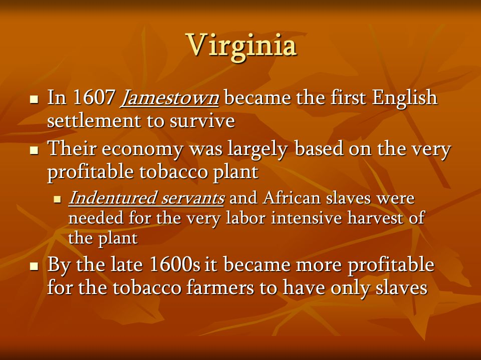 Virginia In 1607 Jamestown became the first English settlement to survive In 1607 Jamestown became the first English settlement to survive Their econo
