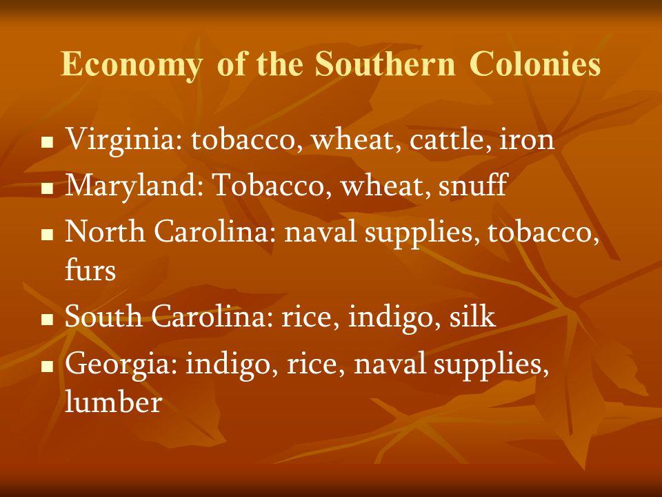 Economy of the Southern Colonies Virginia: tobacco, wheat, cattle, iron Maryland: Tobacco, wheat, snuff North Carolina: naval supplies, tobacco, furs South Carolina: rice, indigo, silk Georgia: indigo, rice, naval supplies, lumber