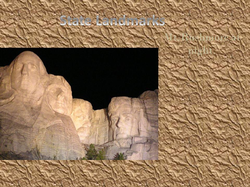 Mt.Rushmore at night.