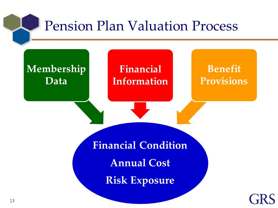 13 Pension Plan Valuation Process Financial Condition Annual Cost Risk Exposure Membership Data Financial Information Benefit Provisions