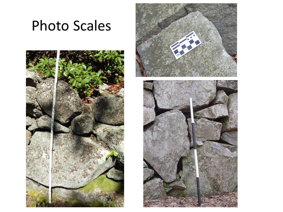 Photo Scales