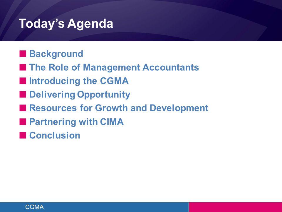 CGMA The Financial Pillar