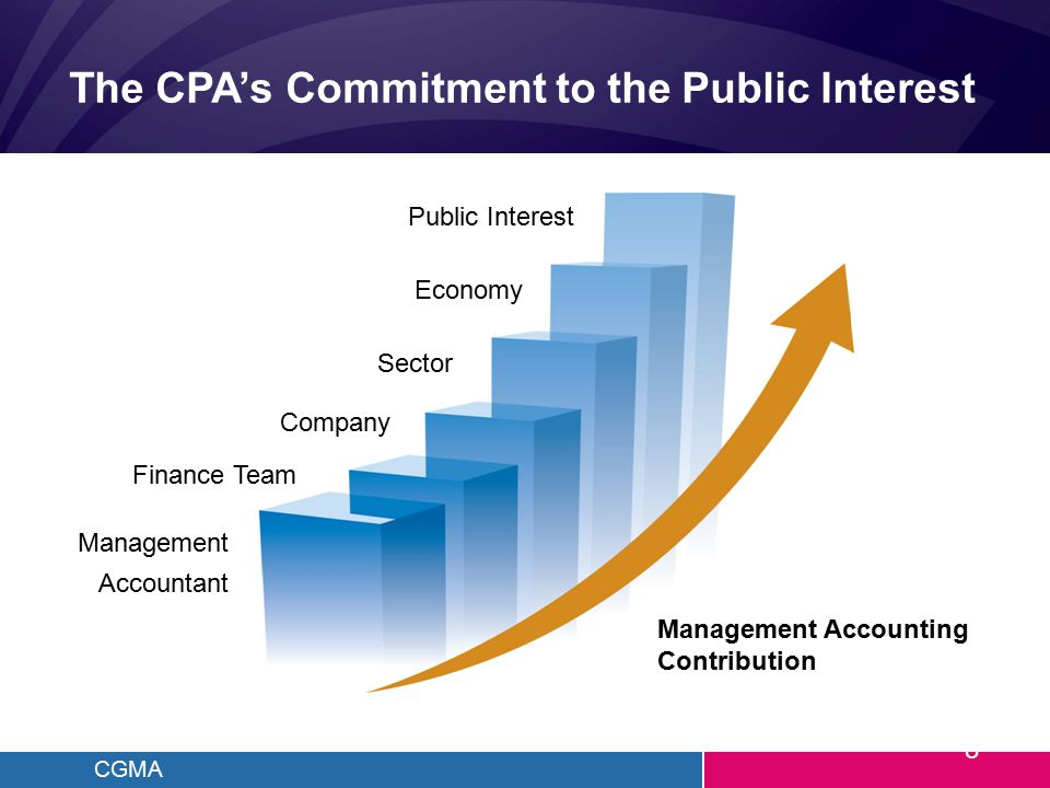CGMA The CPA's Commitment to the Public Interest Management Accounting Contribution Public Interest Economy Sector Company Finance Team Management Acc