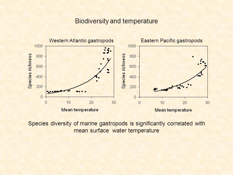 Western Atlantic gastropodsEastern Pacific gastropods Biodiversity and temperature Species diversity of marine gastropods is significantly correlated with mean surface water temperature