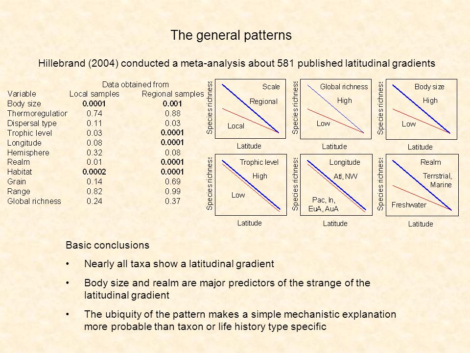 The general patterns Hillebrand (2004) conducted a meta-analysis about 581 published latitudinal gradients Basic conclusions Nearly all taxa show a latitudinal gradient Body size and realm are major predictors of the strange of the latitudinal gradient The ubiquity of the pattern makes a simple mechanistic explanation more probable than taxon or life history type specific