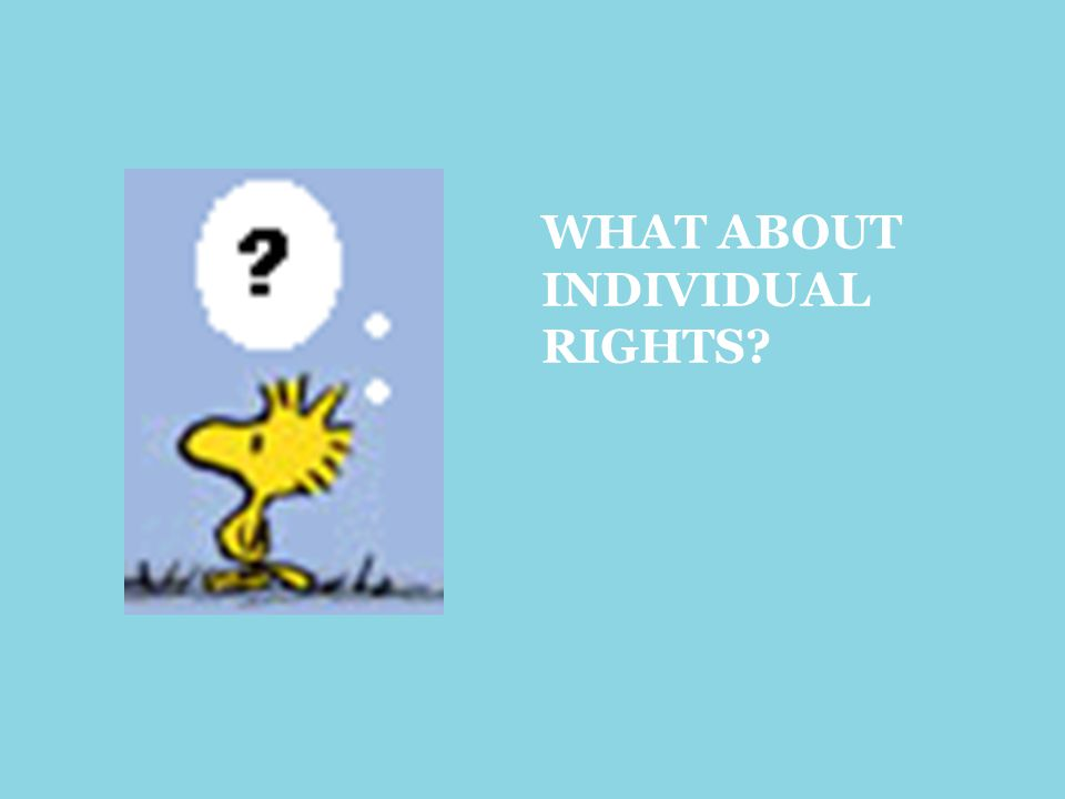 WHAT ABOUT INDIVIDUAL RIGHTS?
