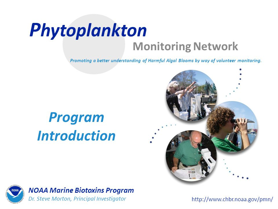 P hytoplankton Monitoring Network Program Introduction Promoting a better understanding of Harmful Algal Blooms by way of volunteer monitoring.