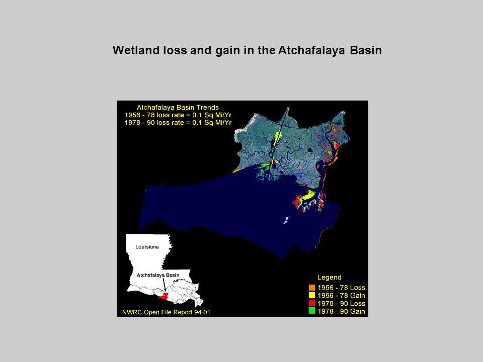 Wetland loss and gain in the Atchafalaya Basin