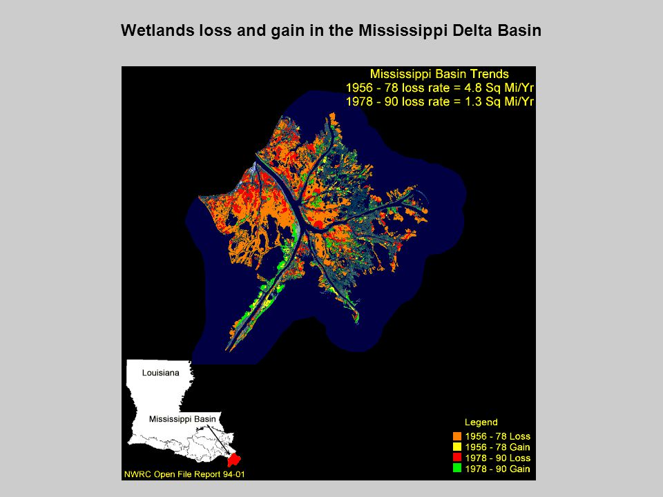 Wetlands loss and gain in the Mississippi Delta Basin