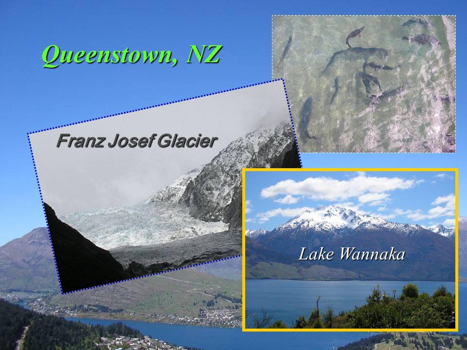 Queenstown, NZ Franz Josef Glacier Lake Wannaka