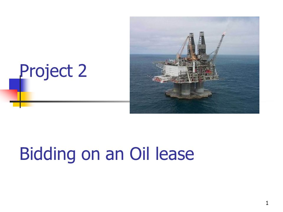 1 Project 2 Bidding on an Oil lease