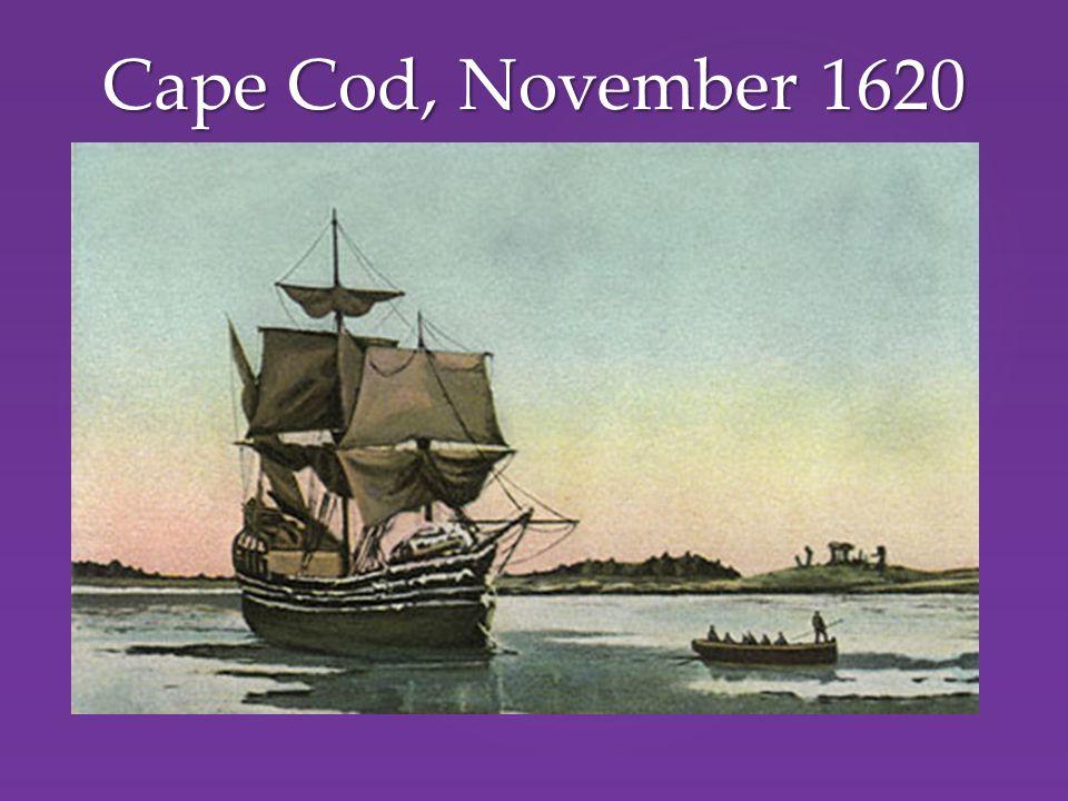 Cape Cod, November 1620