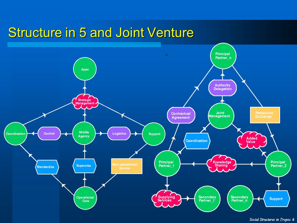 Social Structures in Tropos 6 Structure in 5 and Joint Venture