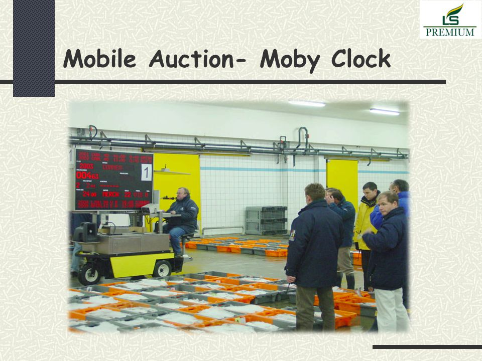 Mobile Auction- Moby Clock