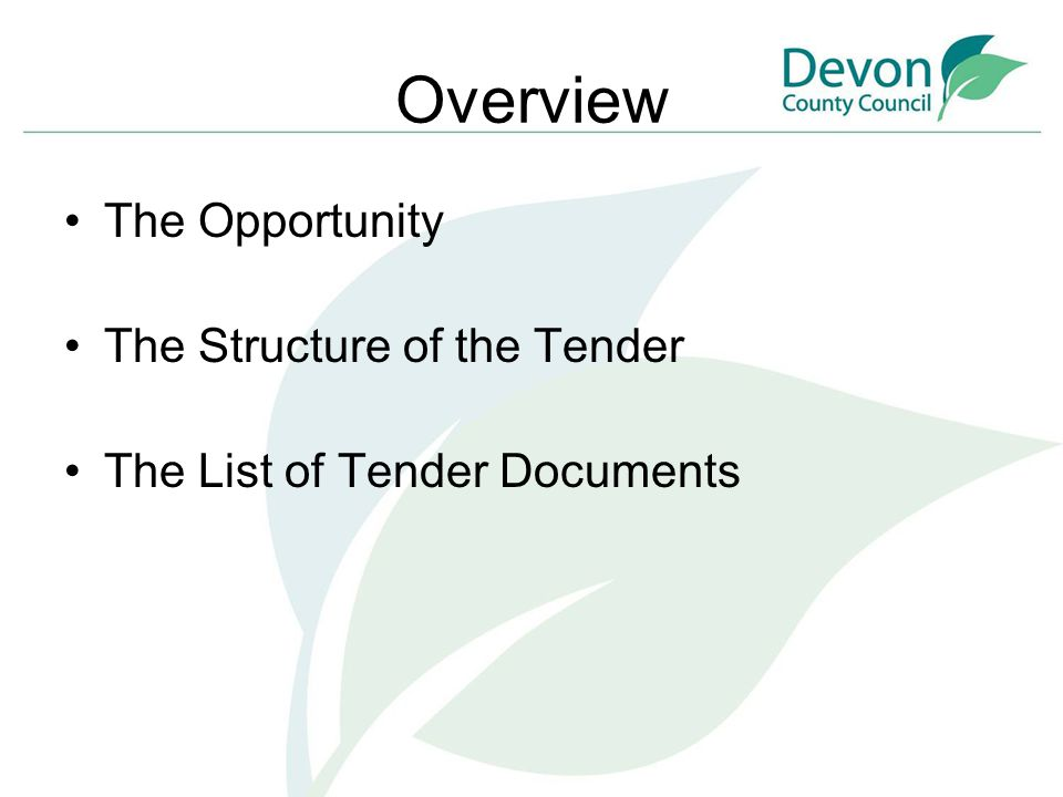 Overview The Opportunity The Structure of the Tender The List of Tender Documents