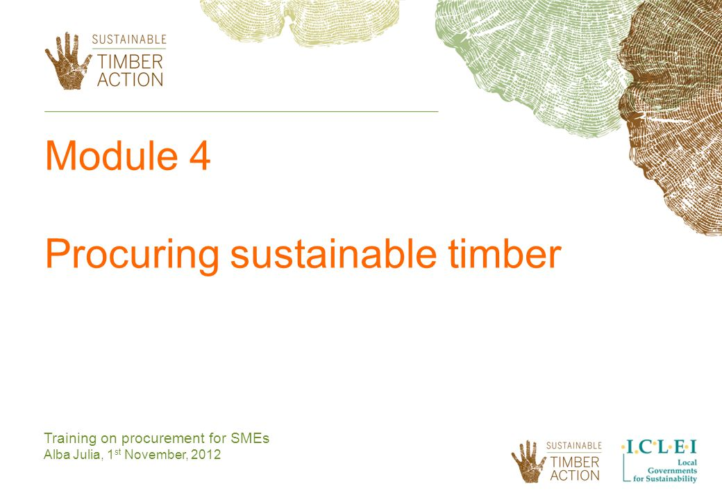 Module 4 Procuring sustainable timber Training on procurement for SMEs Alba Julia, 1 st November, 2012