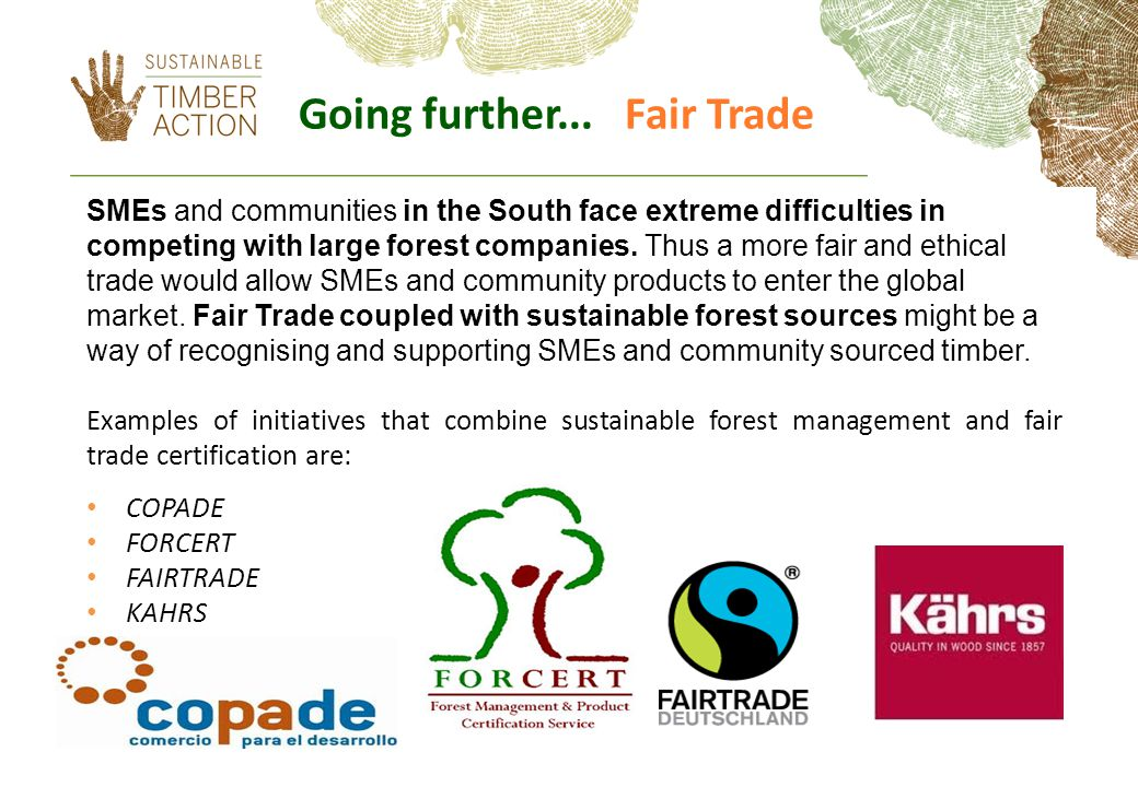 SMEs and communities in the South face extreme difficulties in competing with large forest companies.