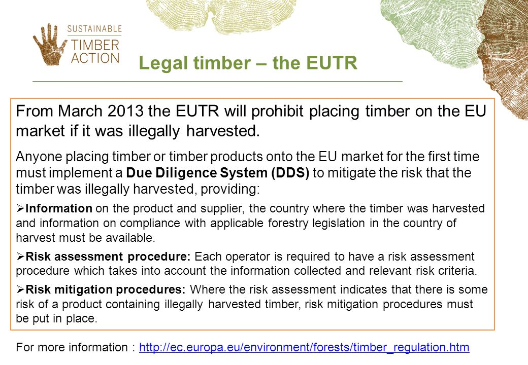 From March 2013 the EUTR will prohibit placing timber on the EU market if it was illegally harvested.