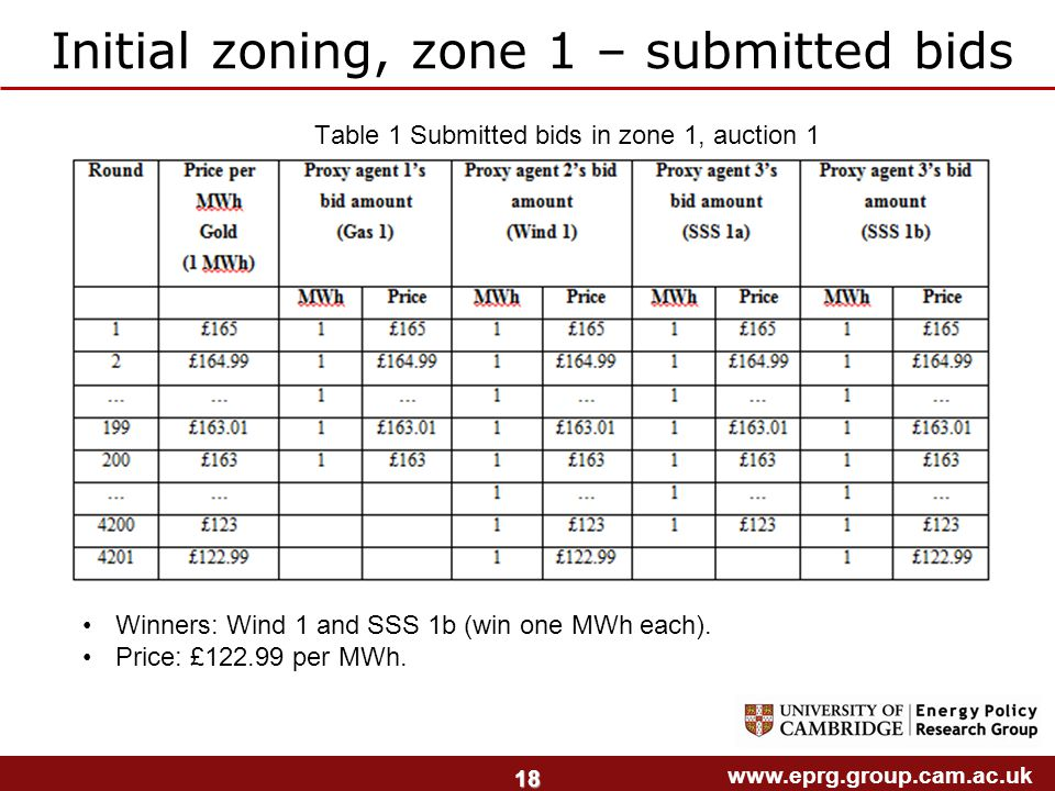 www.eprg.group.cam.ac.uk 18 Initial zoning, zone 1 – submitted bids Table 1 Submitted bids in zone 1, auction 1 Winners: Wind 1 and SSS 1b (win one MWh each).