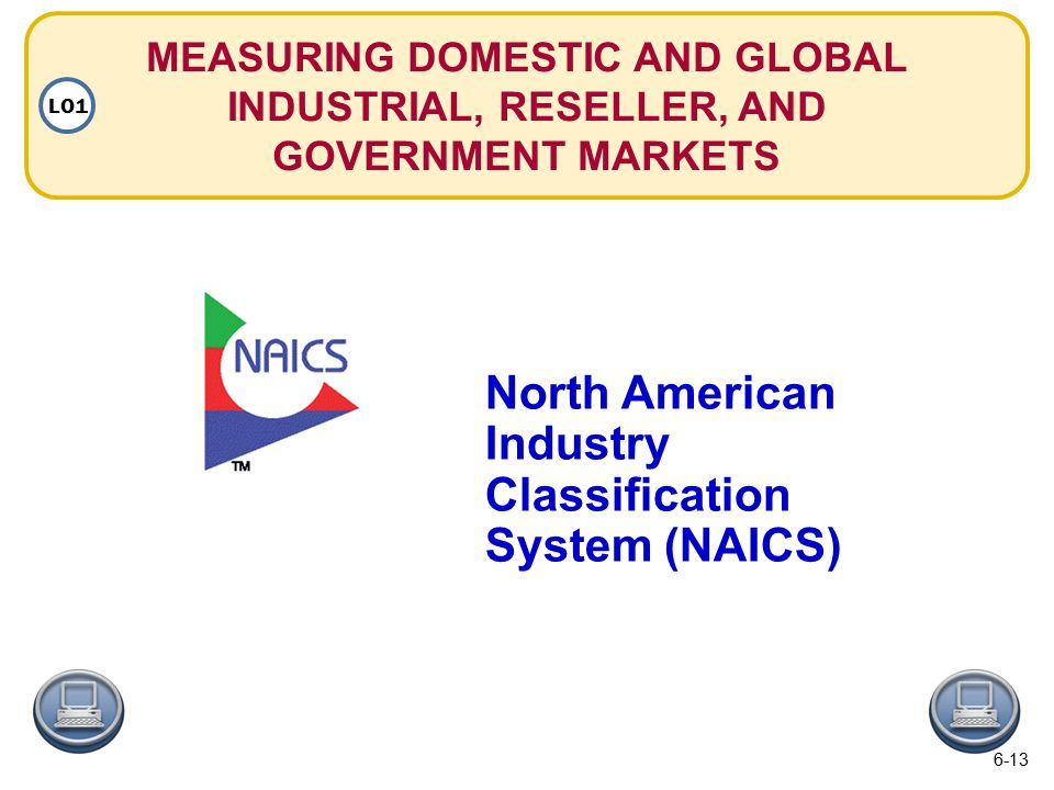 MEASURING DOMESTIC AND GLOBAL INDUSTRIAL, RESELLER, AND GOVERNMENT MARKETS LO1 North American Industry Classification System (NAICS) 6-13