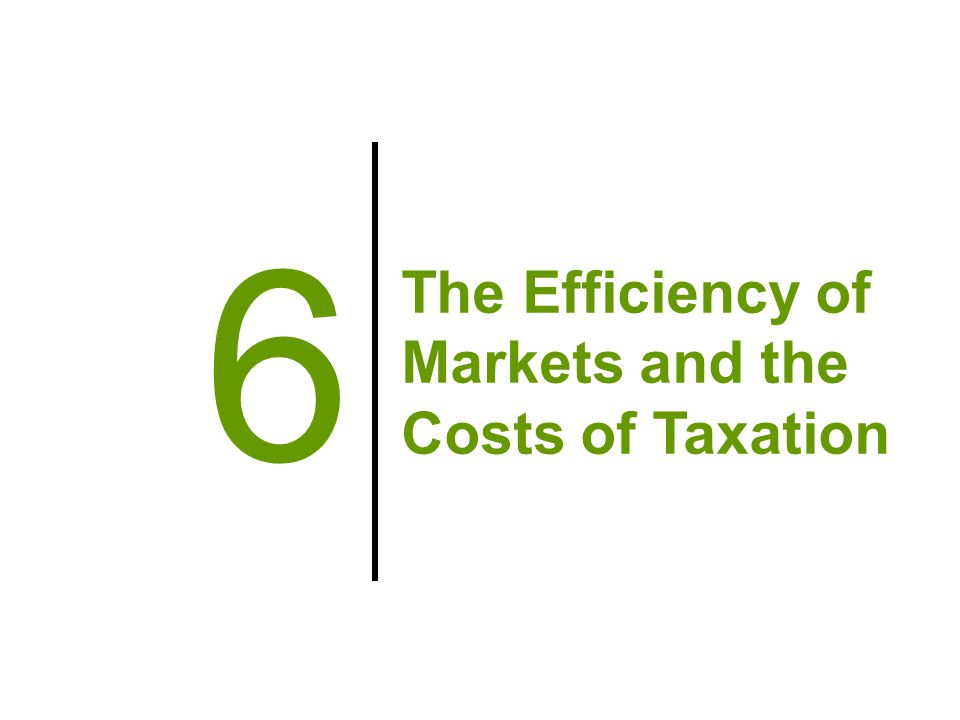 The Efficiency of Markets and the Costs of Taxation 6