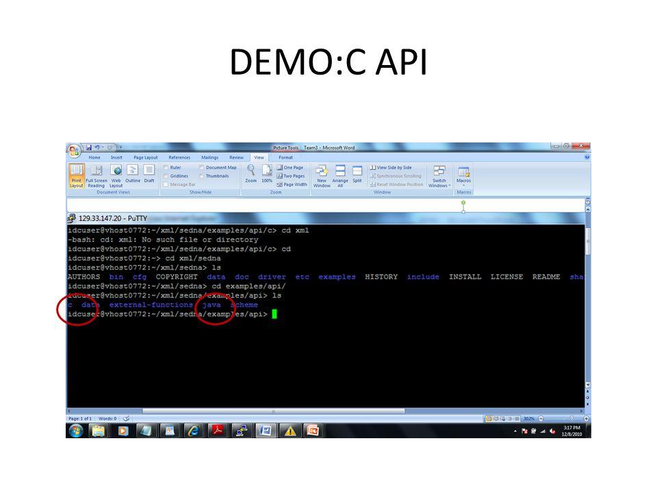 DEMO:C API
