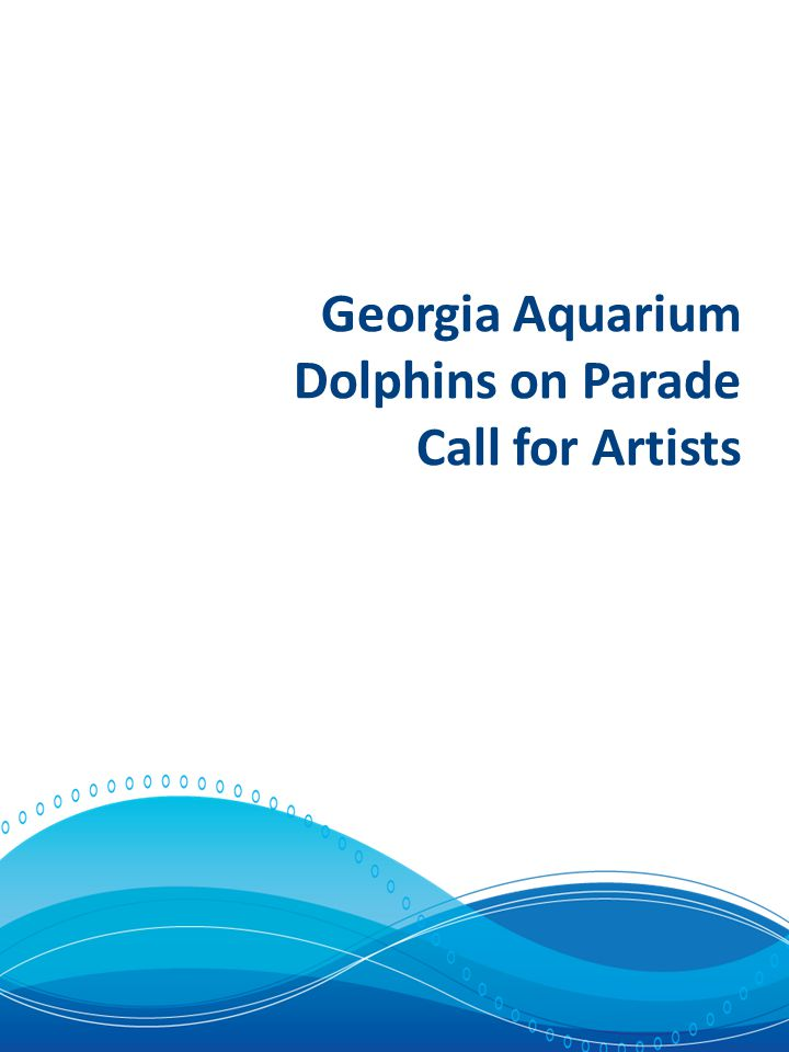 Calling Artists to Join the Dolphin Parade.