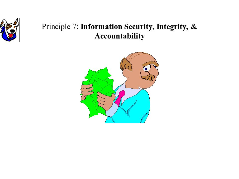Principle 7: Information Security, Integrity, & Accountability