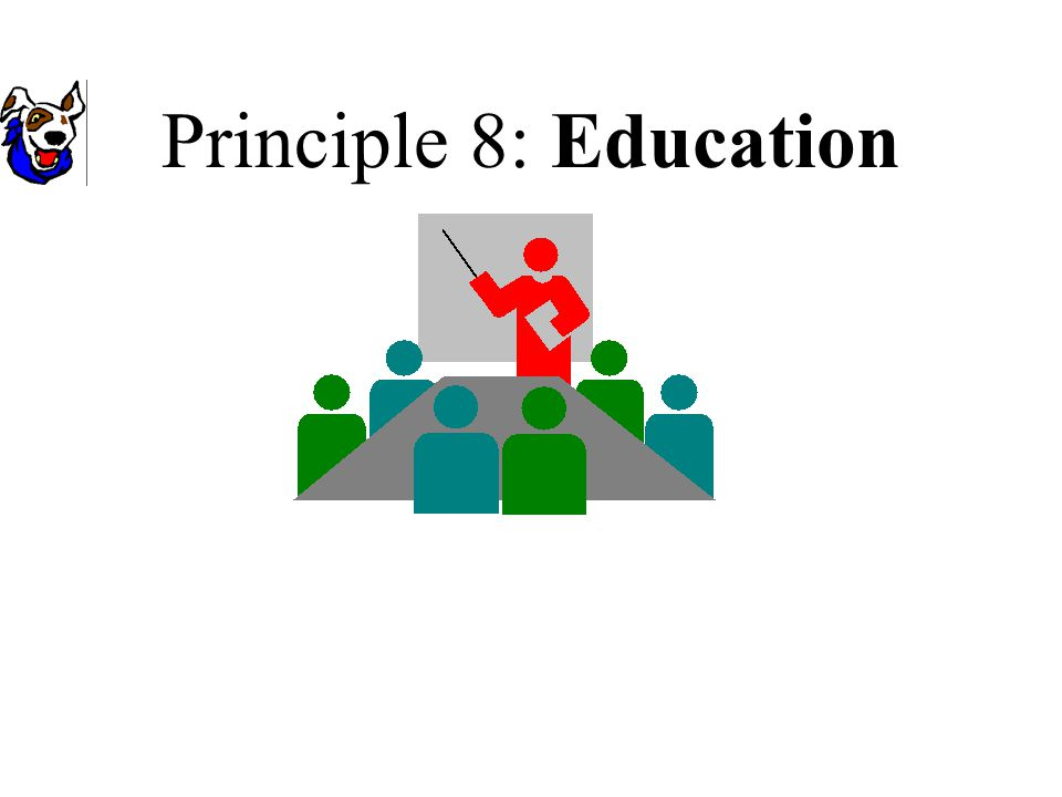 Principle 8: Education