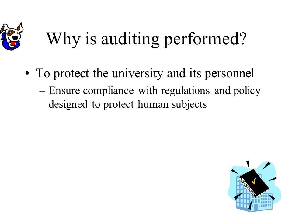 Why is auditing performed.