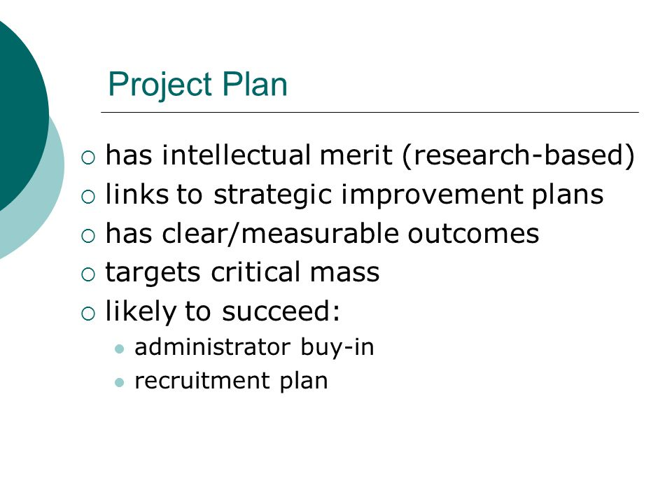 Project Plan  has intellectual merit (research-based)  links to strategic improvement plans  has clear/measurable outcomes  targets critical mass