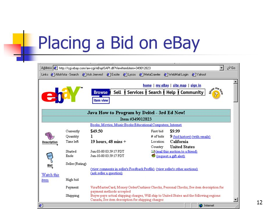 12 Placing a Bid on eBay